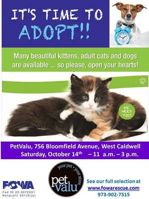 Adoption Announcement PetValu.jpg
