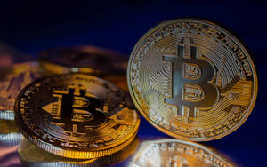 Carousel image 7310a82584568d49cccb bitcoin unlimited support featured