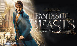 Carousel_image_779ee5cb5eb8b867751b_fantastic-beasts-and-where-to-find-them