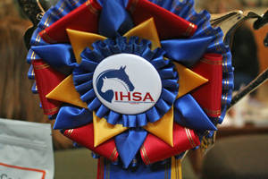 Carousel image 7bc6d843fc3c04be9165 ihsa zone champs 1812