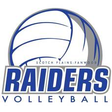 Carousel_image_7d2261bde4aa5ce706a7_volleyball_logo