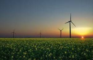 Carousel_image_7ff44271a400444b1d5c_renewable