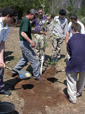 Carousel_image_81ef8543dd2831b9471c_union_county_arbor_day_tree_training