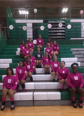 Volley for a Cure.png
