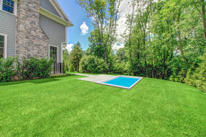 25 - Lush Rear Grounds With Pool (2 of 2).jpg