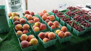Carousel_image_8bd9d70d305cecfda05d_farmers_2017_-_peaches