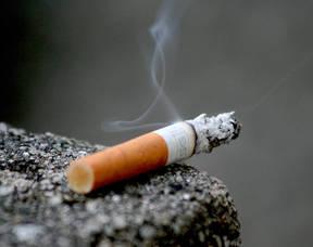 Carousel_image_8e674a331eab2875ca06_cigarette_8_b