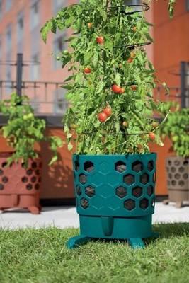 Carousel image 8e9aba9799a29487ffbb tomato planter photocredit gardeners supply company