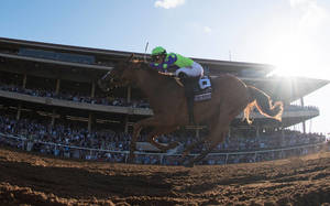 Carousel_image_8ea16e4734b86d4d1bf6_breeders_cup_racing_2017juv330
