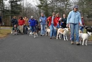 New Year's Dog walk.jpg