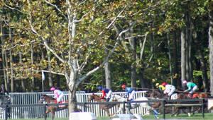Carousel image 9555ecb93d1aae985c47 far hills races undercardl231