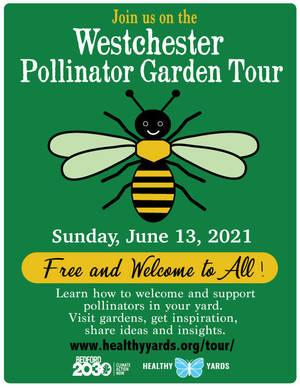 Carousel_image_97e570b9f0ed91da9e5c_pollinatortourgraphic