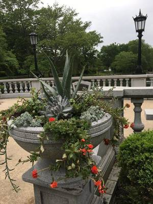 Carousel_image_9874a1343786796b941f_urns_lamp_posts_overlook_june_plants_pond_mindowaskin_park_