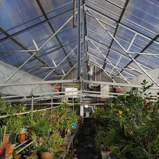 Maplewood's Rahner Greenhouse