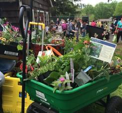 Carousel image 999118a6ffa007527f0a garden fair with wagon