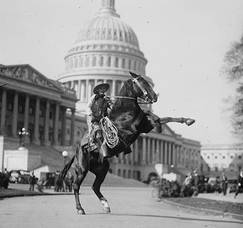 Carousel image 9a202599f2c7b47a6736 vintage horse rearing capitol cr