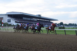 Carousel_image_9b7acc59a8ecb8007c28_justify_the_belmont_stakes_credit_amira_chichakly