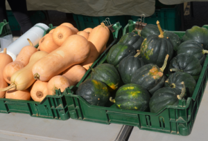 Carousel_image_9bb598b99903574fa00b_gourd-geous_squash_at_the_scotch_plains_farmers_market__1_