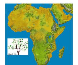 African Gene 3 (1).jpg