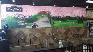 Carousel_image_a80b449232cfe7463cda_petvalu_dog_wash_mural_branch_brook_park