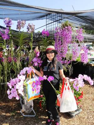 4th Annual Orchid & Plant Festival