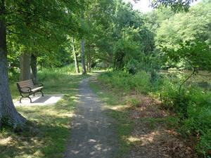 Carousel_image_ae59f7c739fa3af862d5_footes_pond-loyola-adjacent_trail