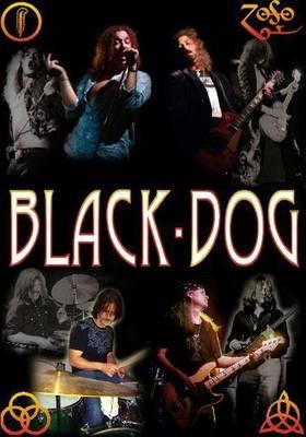 Carousel_image_affa57ff37bcd1fc15e6_440_black_dog_poster_ted