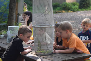 meadowbrook 3.jpg