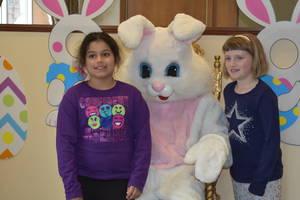 Carousel_image_b1f8d59854c9ff1d87ac_bunny_bunny