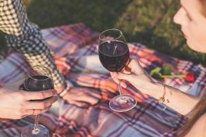 Carousel image b44cc12b79938474d669 wine glass picnic blanket 1853380 1920