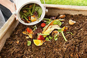 Composting-and-Good-Soils.jpg