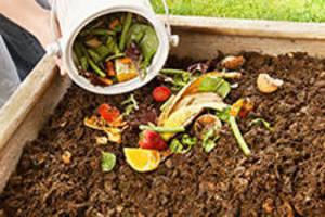 Carousel_image_b5a6c011f344de52827b_composting-and-good-soils