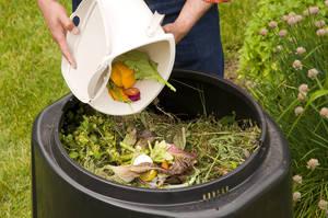 Carousel_image_b6dd96754b938a4e0e36_compost_methods_food_scraps