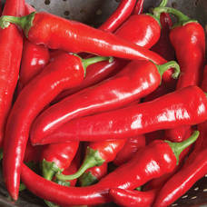 Carousel image b703db7a071407163e5e red ember pepper photo credit all america selections