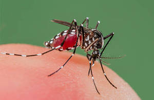 Carousel_image_b852a9f4969980bcf383_zika-virus-quiz-promo