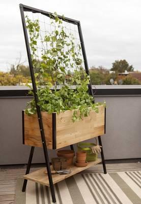 Carousel_image_ba81bf02a619d525124c_apex_planter_with_trellis_and_shelf_photo_credit__gardeners.com__1_