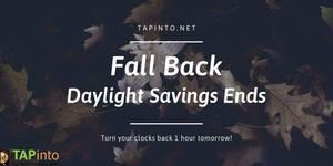 Fall Back - Daylight Savings