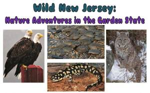 Carousel_image_c11d700d98773d621c13_wild_new_jersey_flyer-page-001