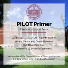 2020 Verona PILOT Primer.png