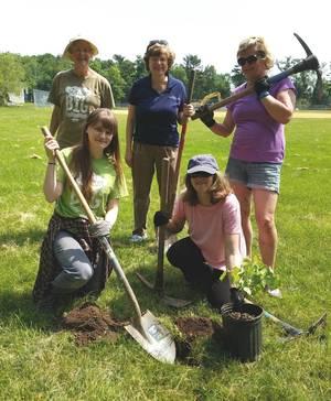 Carousel_image_c6c57f2f20e3acbf62dc_meisel_tree_planting