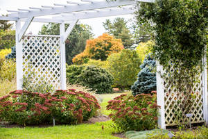 Perennial Garden White copy (1).jpg
