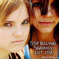 Carousel_image_c7c8685f4cb99d5d063b_40394d5576d5f38de484_carousel_image_453b811cf0aa4cb6de0e_stop_bullying._seriously__just_stop