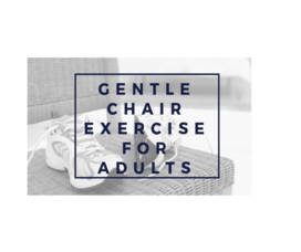 Gentle Chair Exercise.png