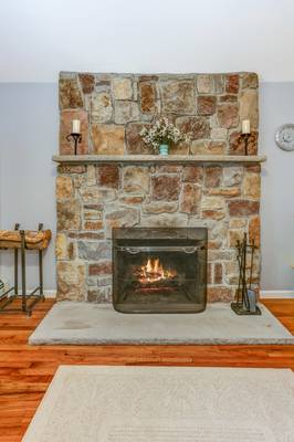 010_Living Room Fireplace.jpg