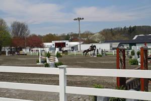 Carousel_image_cb2766879e8f6b1fd10b_garden_stat93e_horse_show_18_by_lillian_shupe