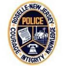 Carousel_image_cd27f4a244313caa8b58_roselle_police