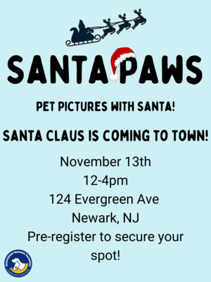 Carousel_image_ce8ea1f5f503d8a618fc_santa_paws_pet_pics_with_santa