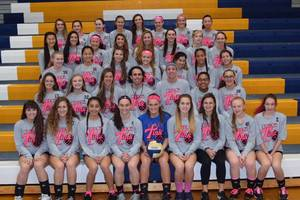 Carousel_image_ceb85a59f51f520ad44a_roxbury_volleyball_team_for_dig_pink