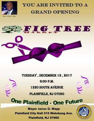 Carousel_image_cefcf825ac0c58d3c2a7_ed_-_grand_opening_fig_tree_market_11-30-2017