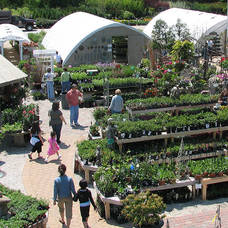 Carousel image d1f3bd68da4326e2a9c7 reynolds gardencenter